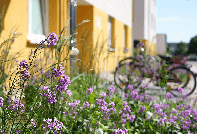 architektur-projekt-ettlingen-architekturbuero-stuffler-5